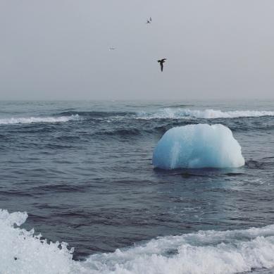 jökulsarlòn-iceberg-black-sand-beach.jpg.jpeg