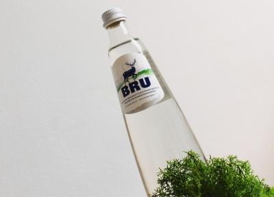 BRU l'eau qui jaillit naturellement perlée du sol belge (7)